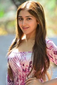 Actor Sayesha Saigal in GajiniKanth, Actor Sayesha Saigal photos, videos in GajiniKanth