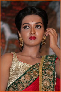 Actor Catherine Tresa in Rudramadevi, Actor Catherine Tresa photos, videos in Rudramadevi