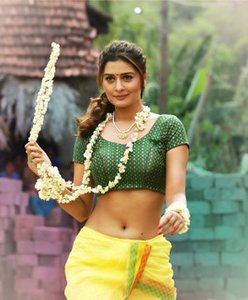 Payal Rajput Stunning Images.
