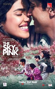 The Sky Is Pink Posters